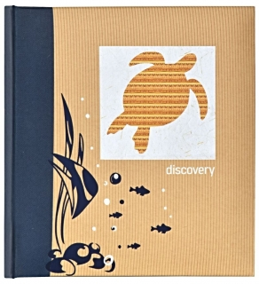 Q89 DISCOVERY TURTLES   BB200 10x15