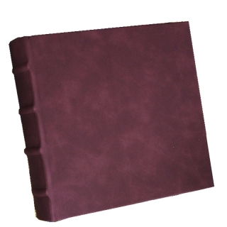 S482 ALBUM ECOPELLE BORDO BB100 13x19